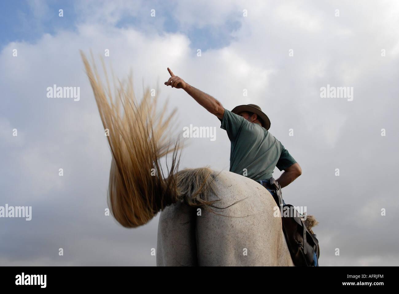 Un éleveur de bétail israélien portant un pistolet monté sur un cheval dans les hauteurs du Golan, dans le nord d'Israël Banque D'Images