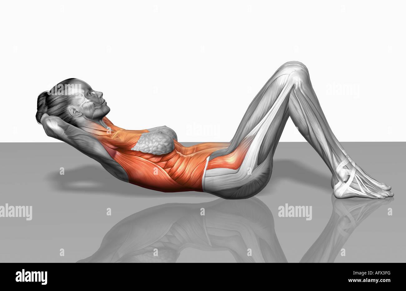 Exercices De Crunch Partie 1 De 2 Photo Stock Alamy