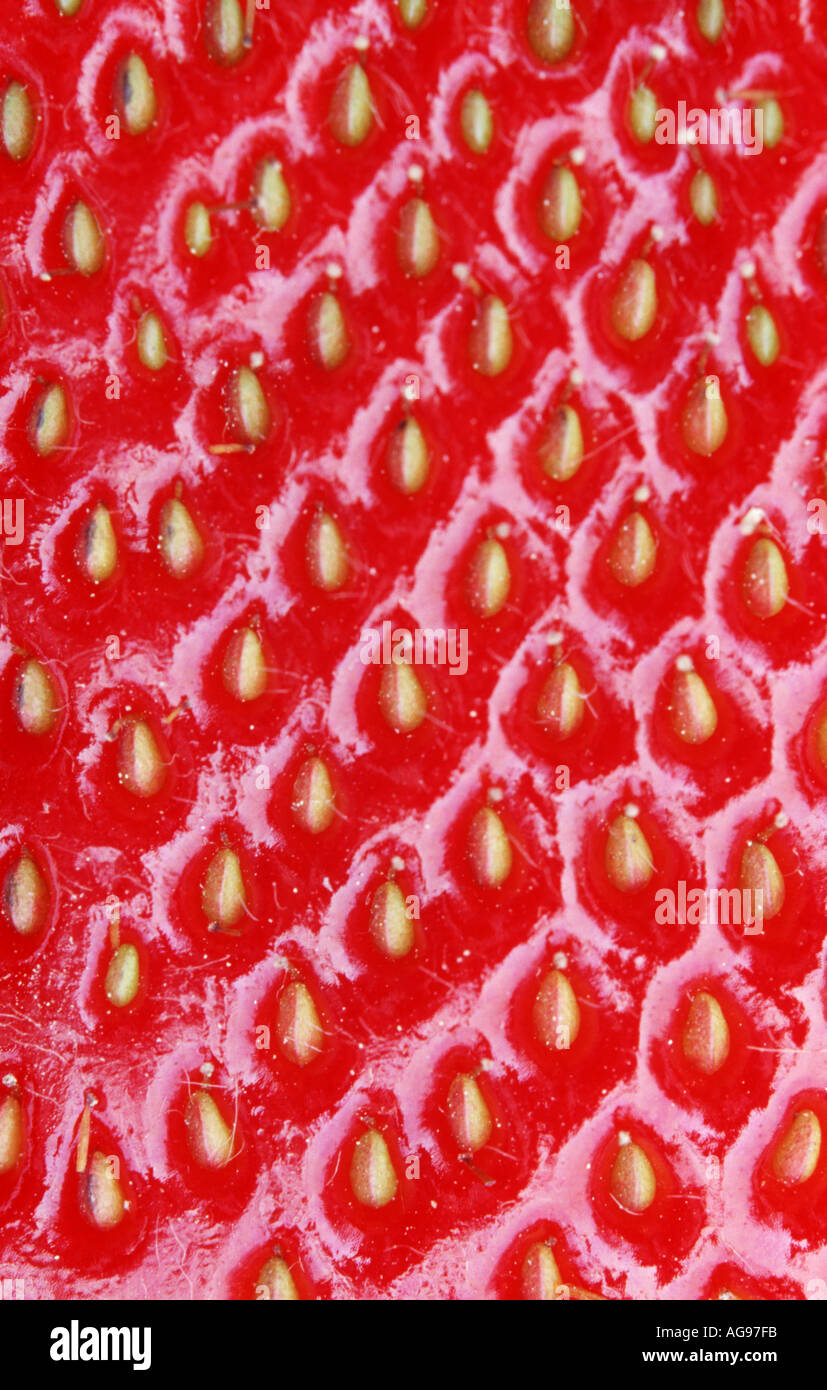 Close up of strawberry Photo Stock