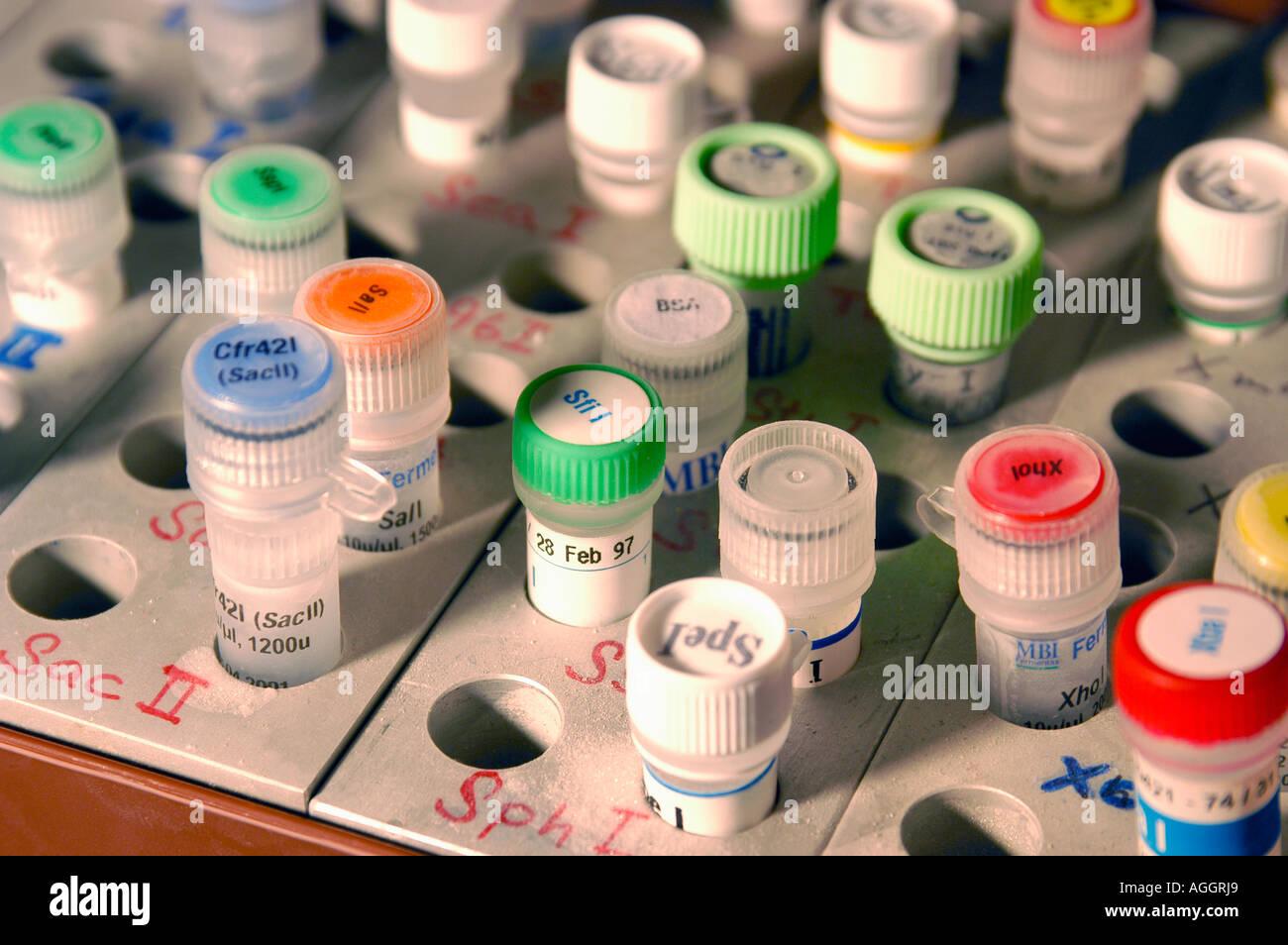 Les échantillons dans le congélateur contenant du matériel de modification génétique / génie génétique (c.-à-d. des enzymes de restriction, les particules moléculaires utilisés Photo Stock