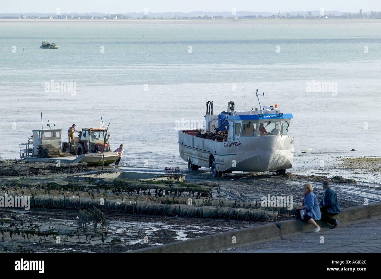 la pÊche des moules amphibian truck port de cancale bretagne france