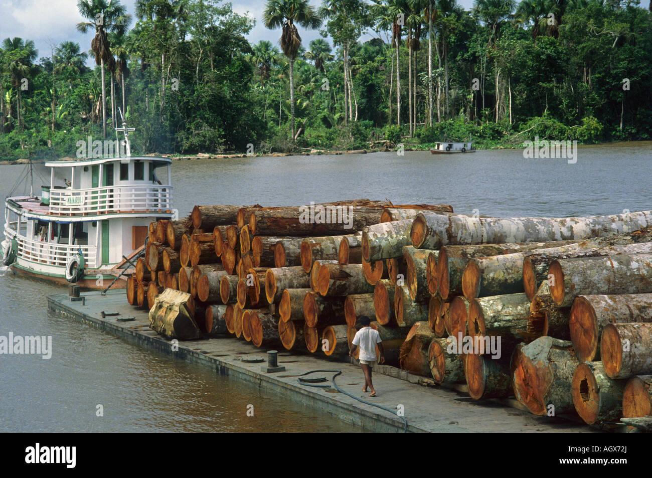 La déforestation chaland chargé avec des journaux dans l'île de Marajo Amazone Para Brésil Photo Stock