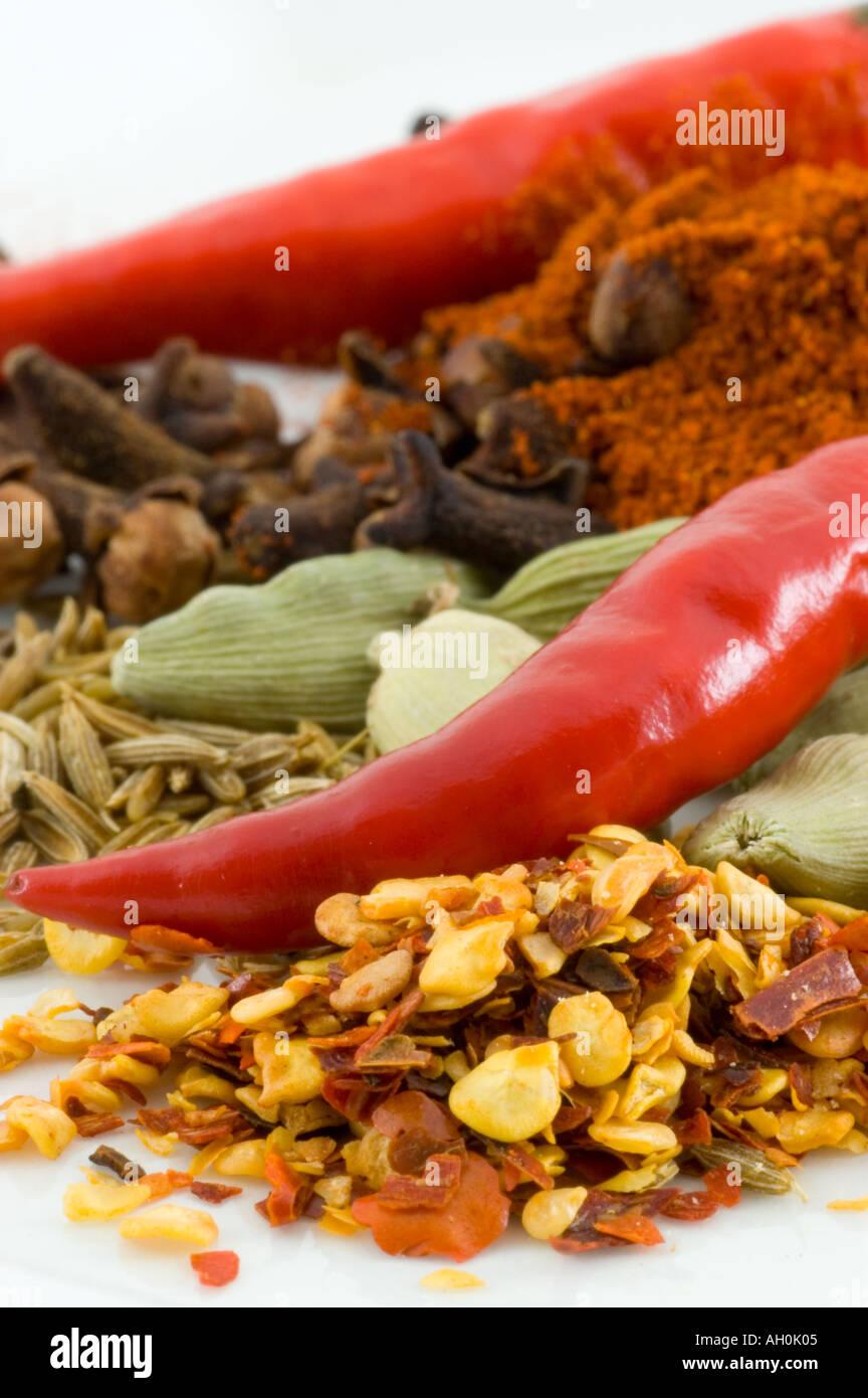 Une sélection d'épices sur un fond blanc. Photo Stock