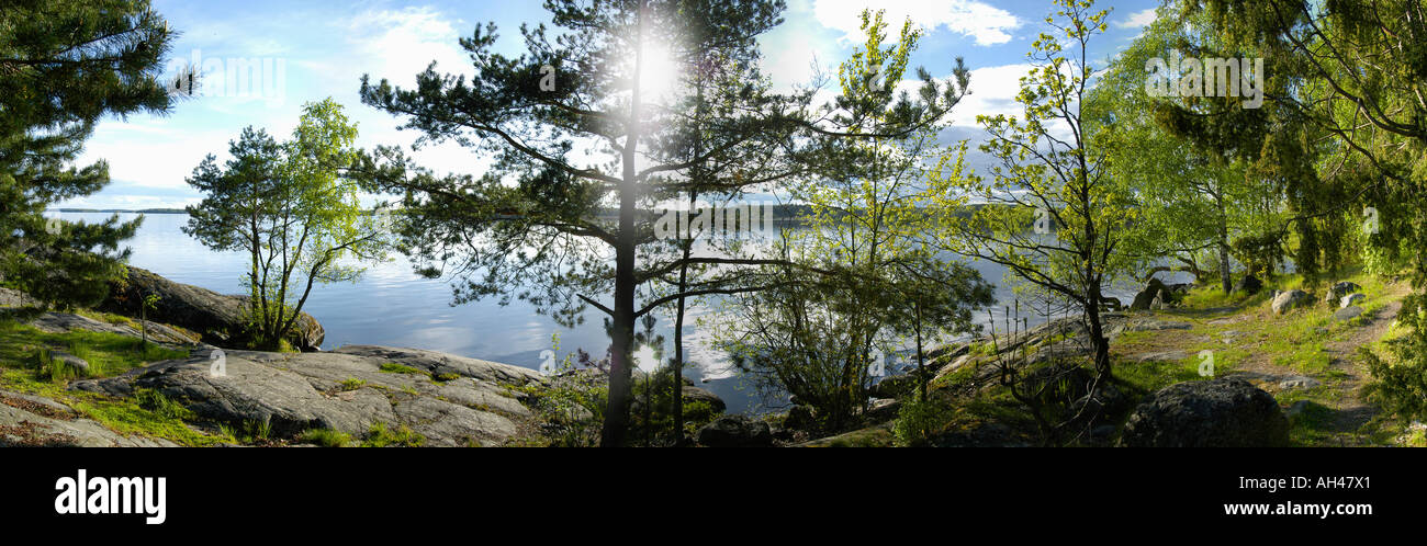Vue sur le lac à partir d'une forêt luxuriante, Suède Photo Stock