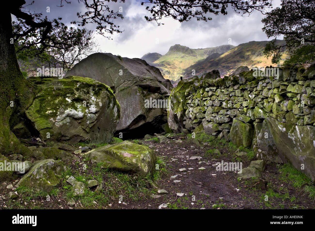 Copt Howe rochers Langdale à Great Langdale avec les Langdale Pikes dans la distance. Parc National de Lake District, UK Banque D'Images