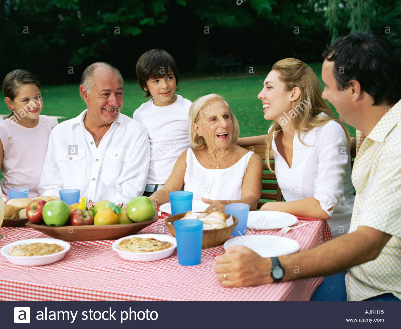 Un repas de famille dans le jardin Photo Stock