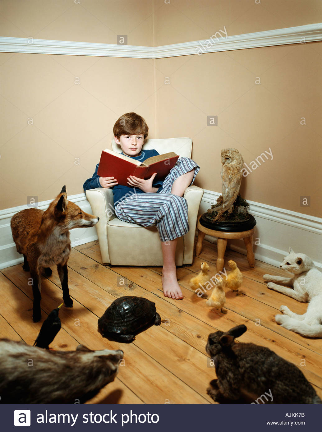 Boy reading histoire d'animaux en peluche Photo Stock