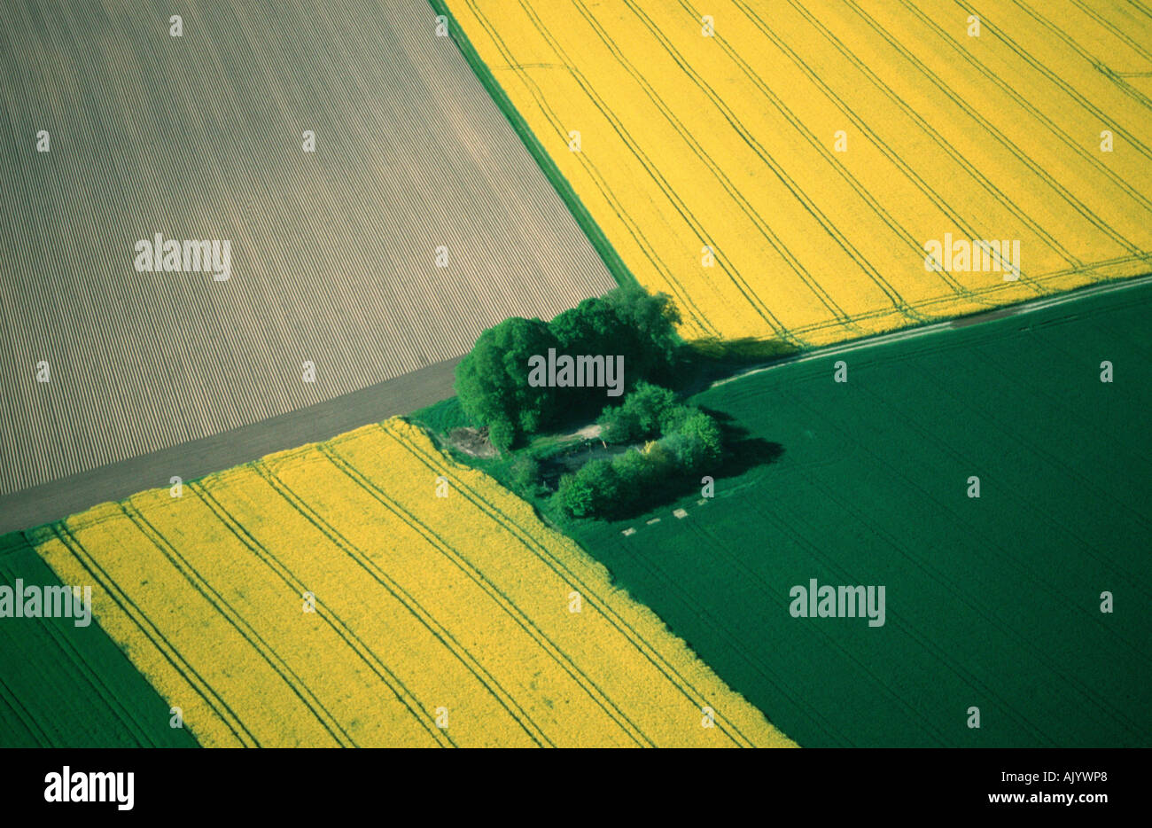 Pays agricole / Agrarland Banque D'Images