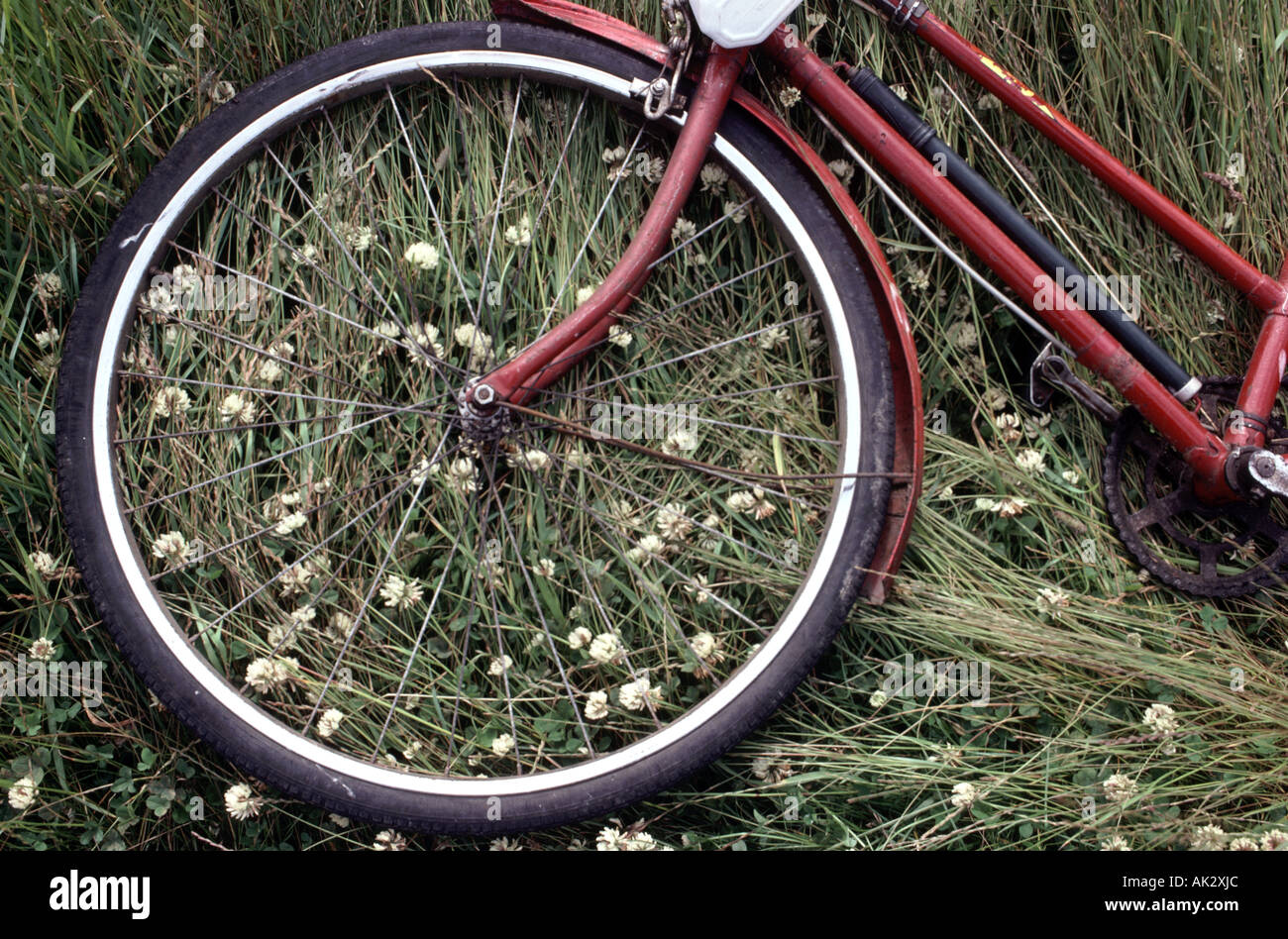 Still Life of red bike se reposant dans un champ Photo Stock