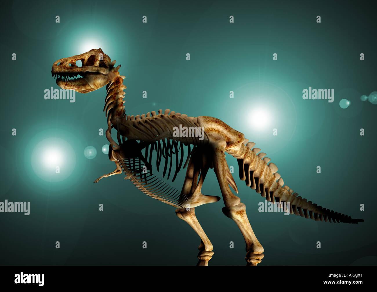 Squelette de dinosaure Dinosaurier Feststellung Banque D'Images