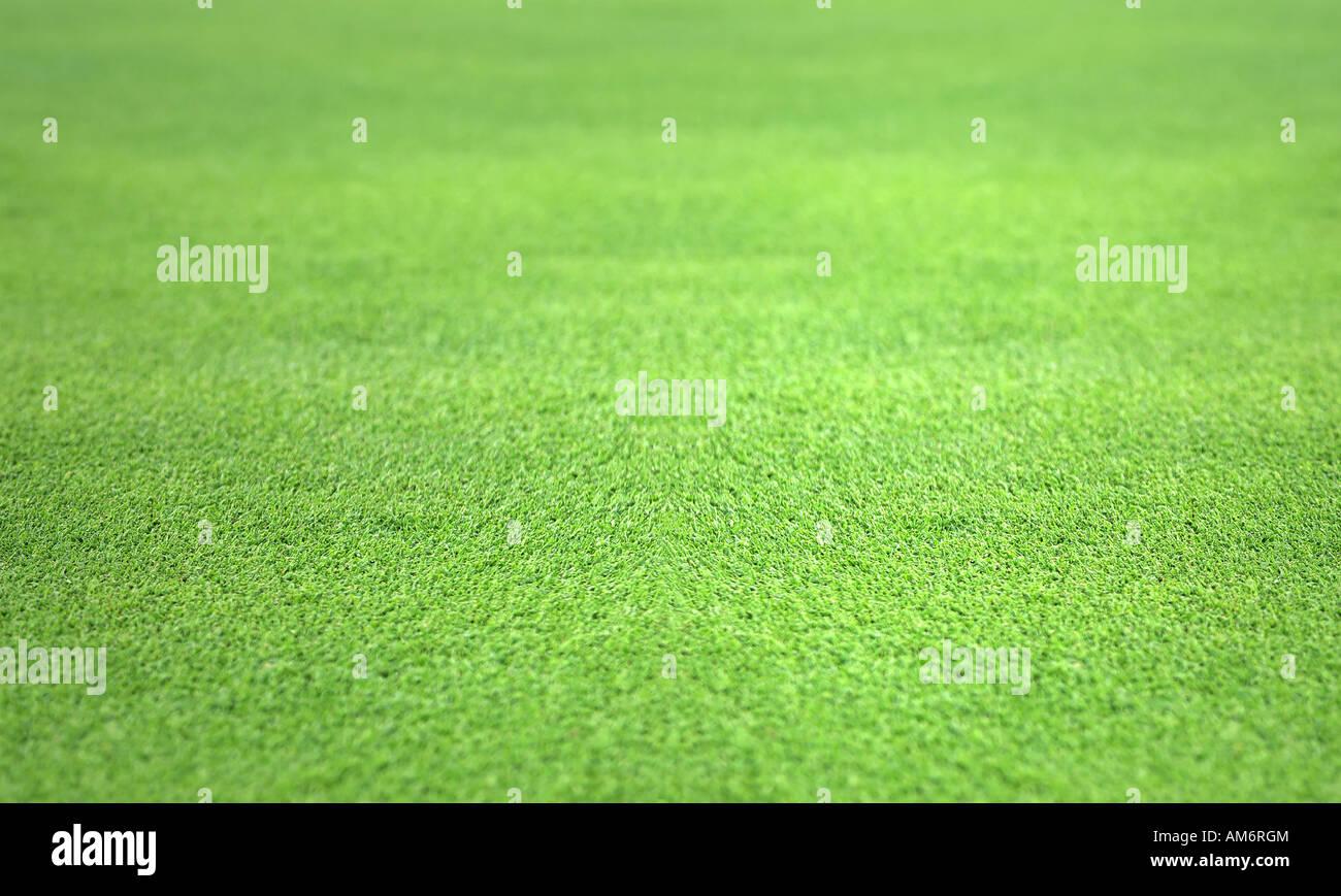 De l'herbe parfaitement plate et un vert Photo Stock