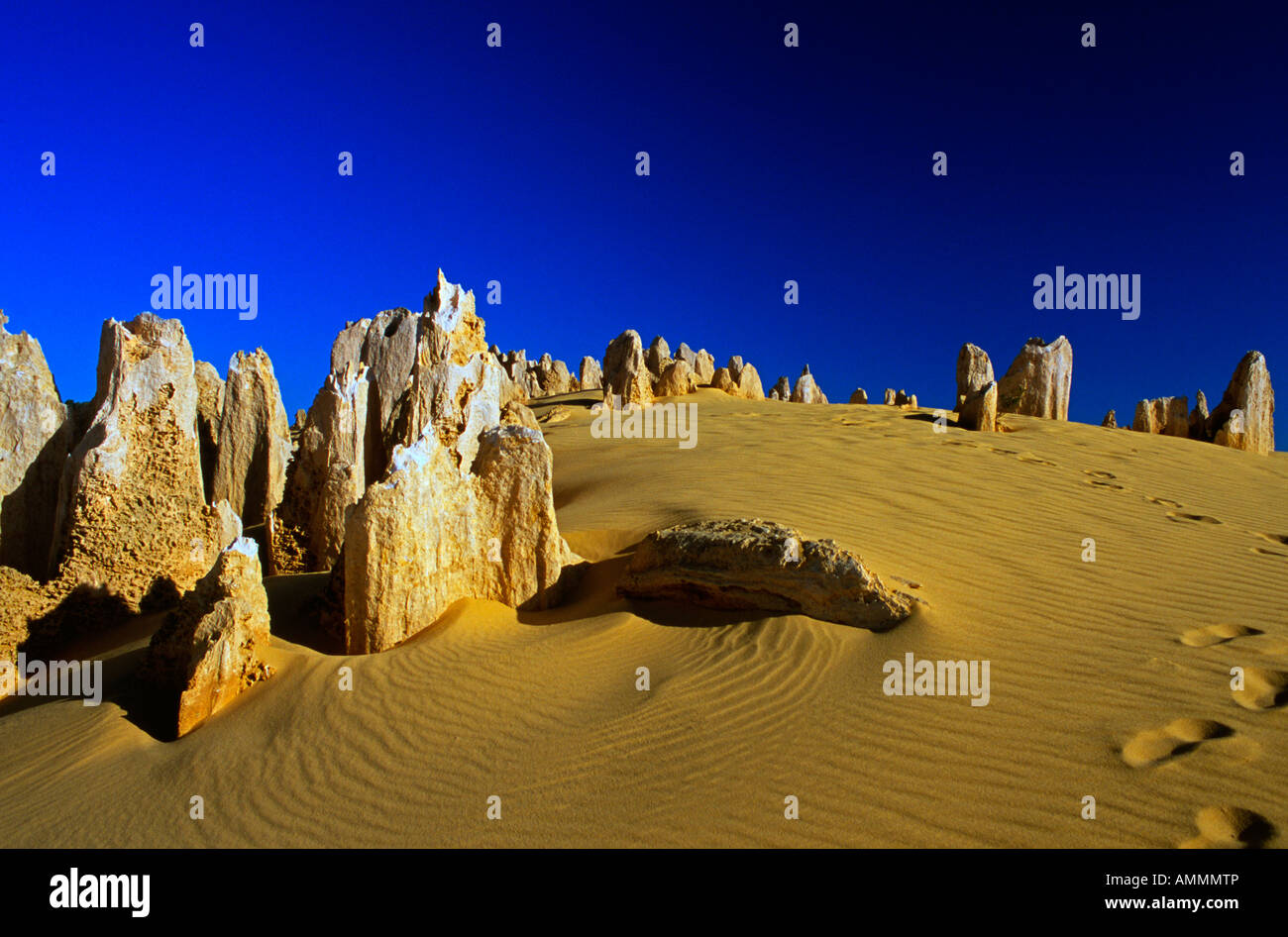 Le Cervantes Pinnacles National Park Australie Occidentale Photo Stock