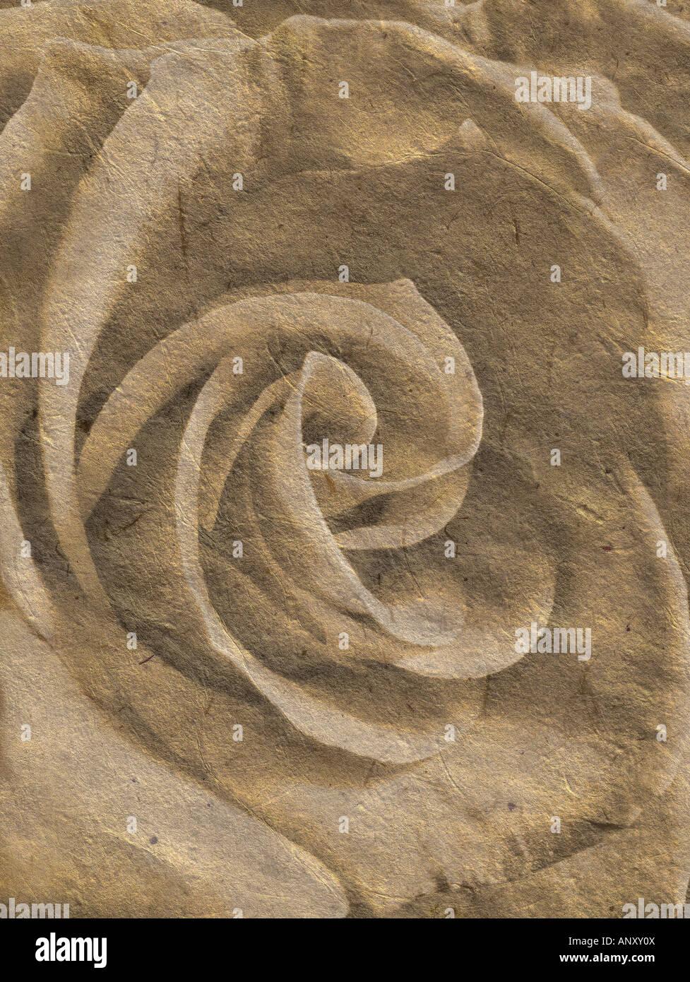 Rose dans une illustration romantique Photo Stock