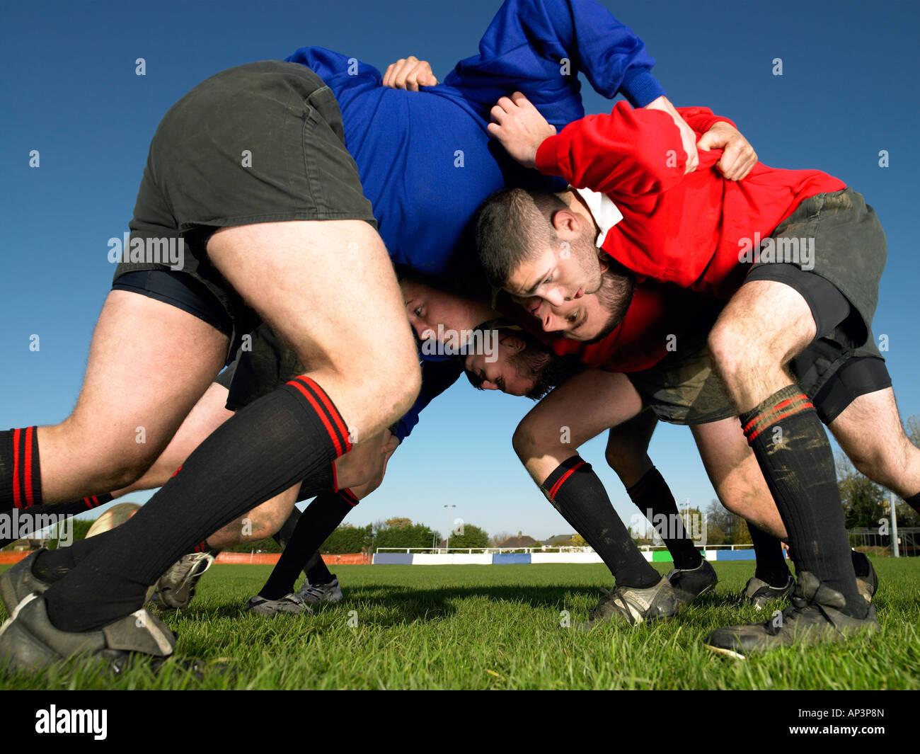 Les joueurs dans une mêlée de Rugby Photo Stock
