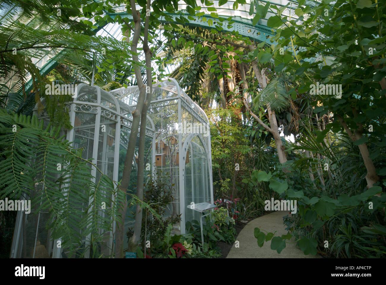 Une volière à l\'intérieur d\'une serre au jardin des serres d ...