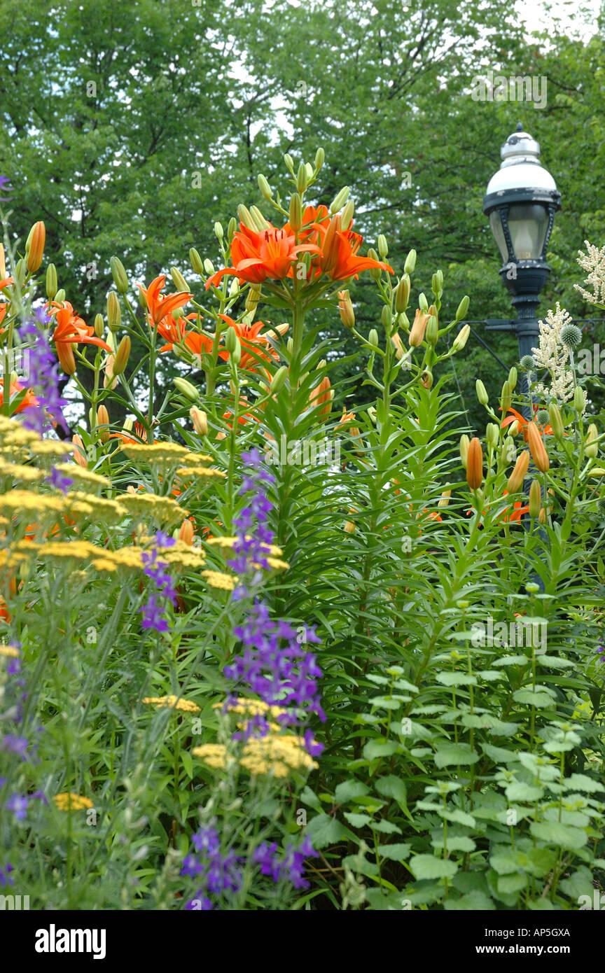 Washington, DC, Mary Livingston Ripley jardin, Photo Stock