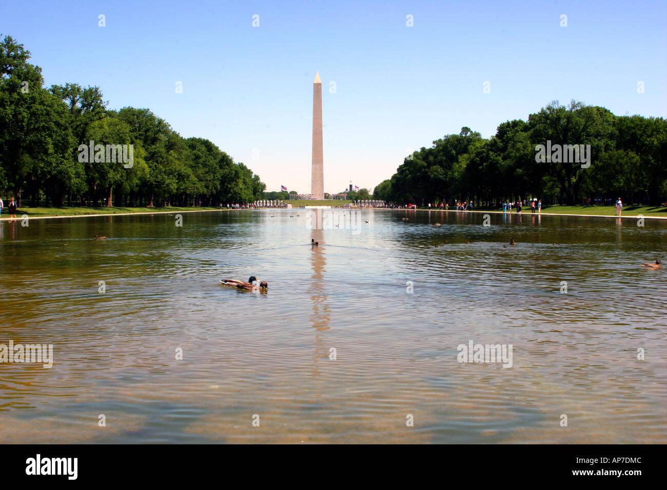 Washington monument et miroir d'eau Banque D'Images