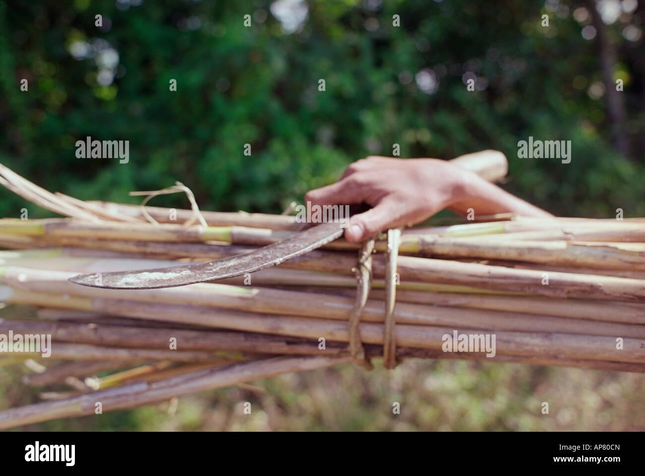 Un travailleur exerçant son activité sous la main un couteau et bambou Photo Stock