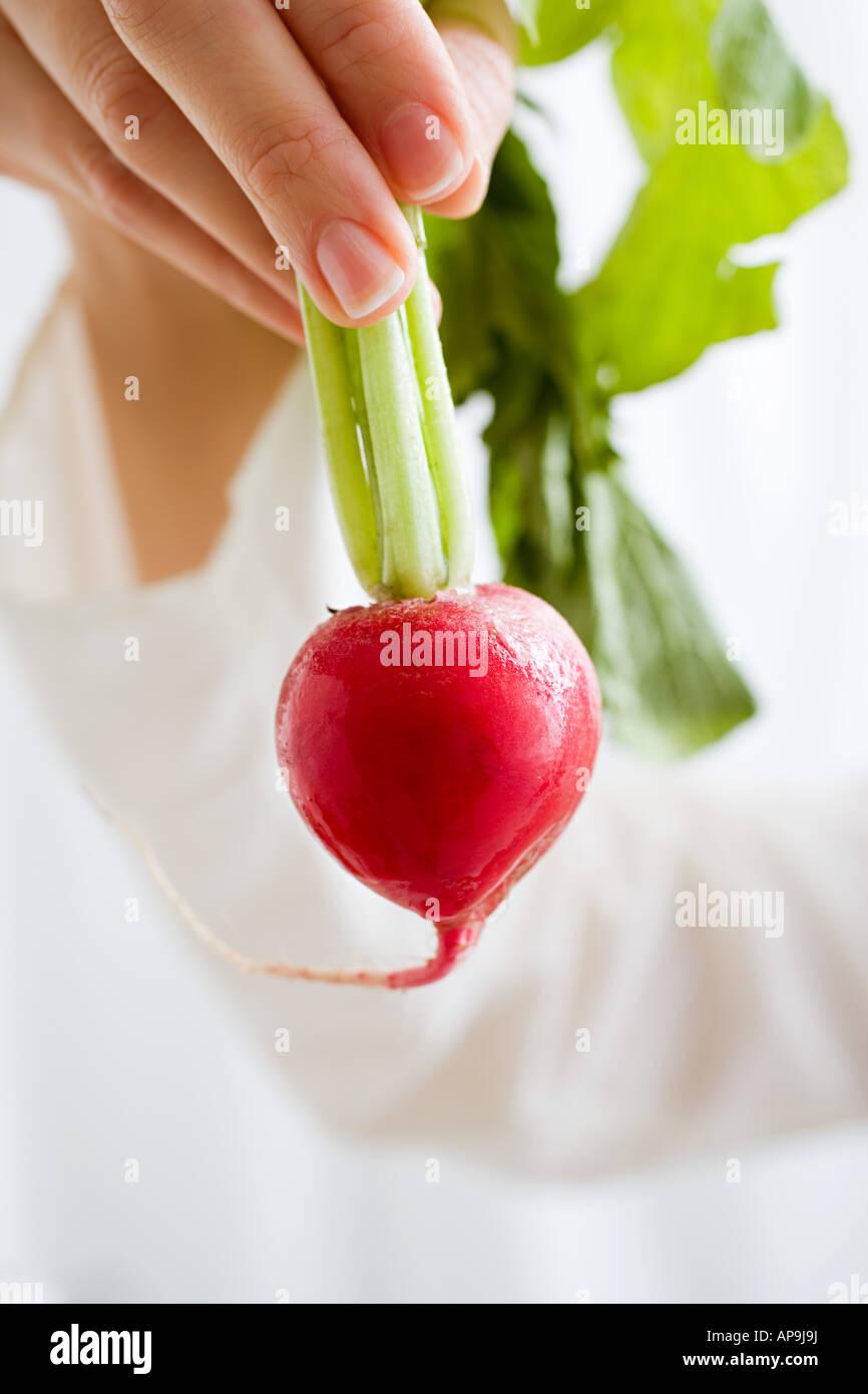 Femme tenant un radis Photo Stock