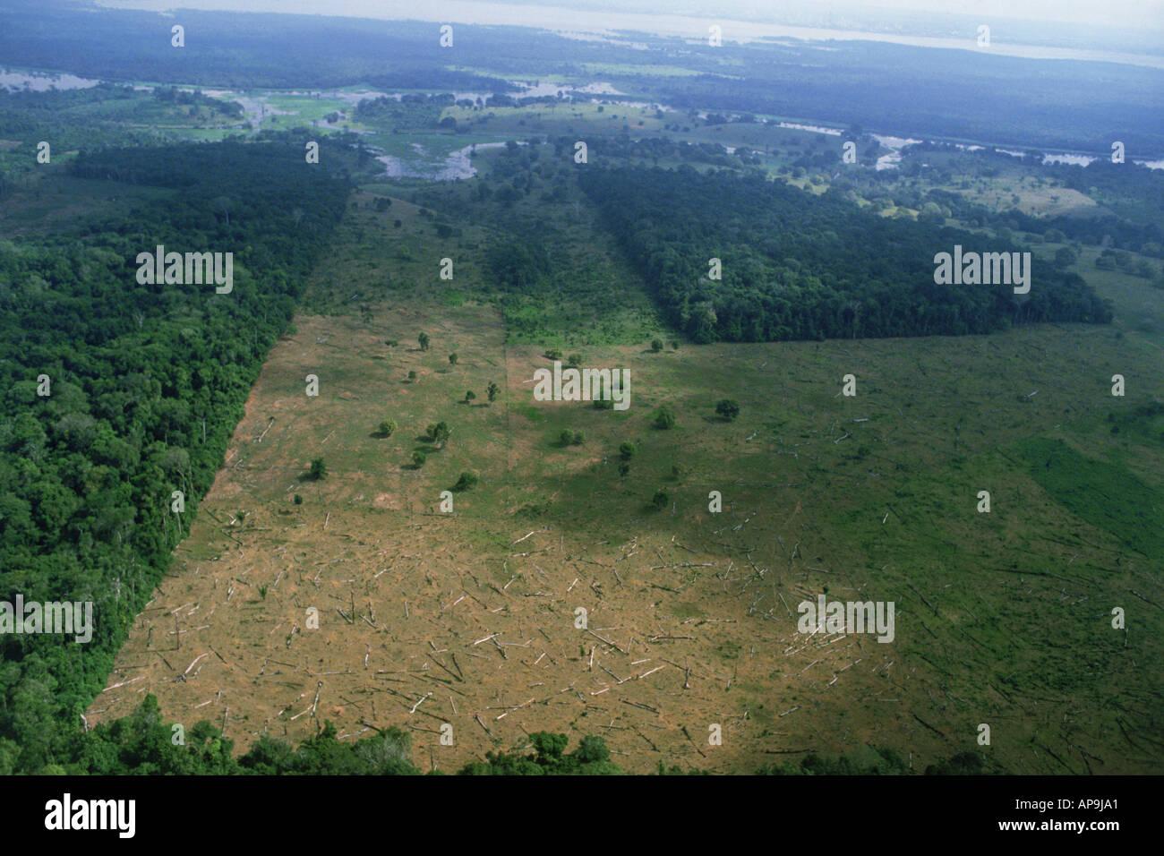 Vue aérienne de la déforestation des forêts tropicales au Brésil près de Amazon River Photo Stock