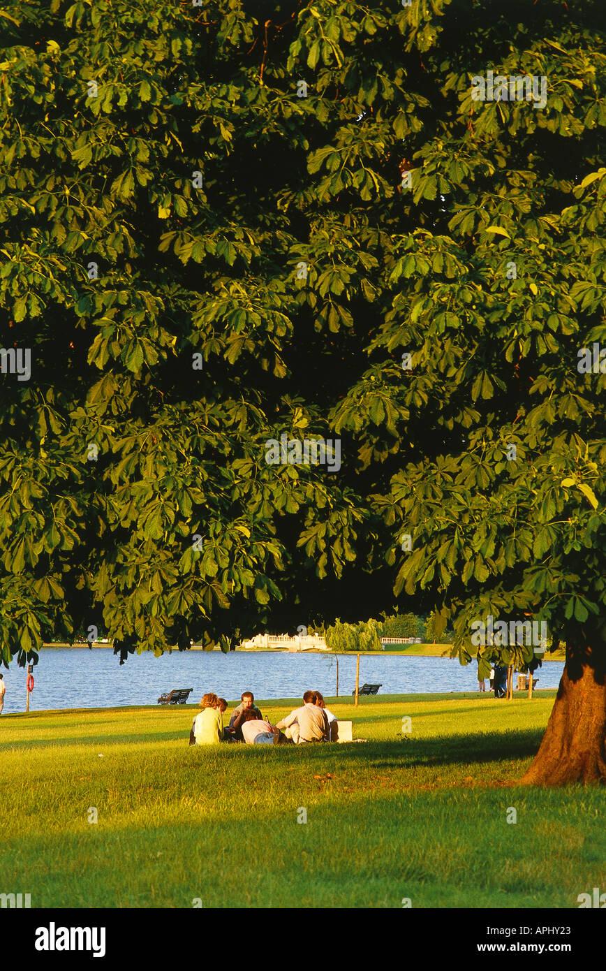 Un groupe de gens assis à l'ombre sous un grand marronnier par la Serpentine dans Hyde Park Londres Angleterre Photo Stock