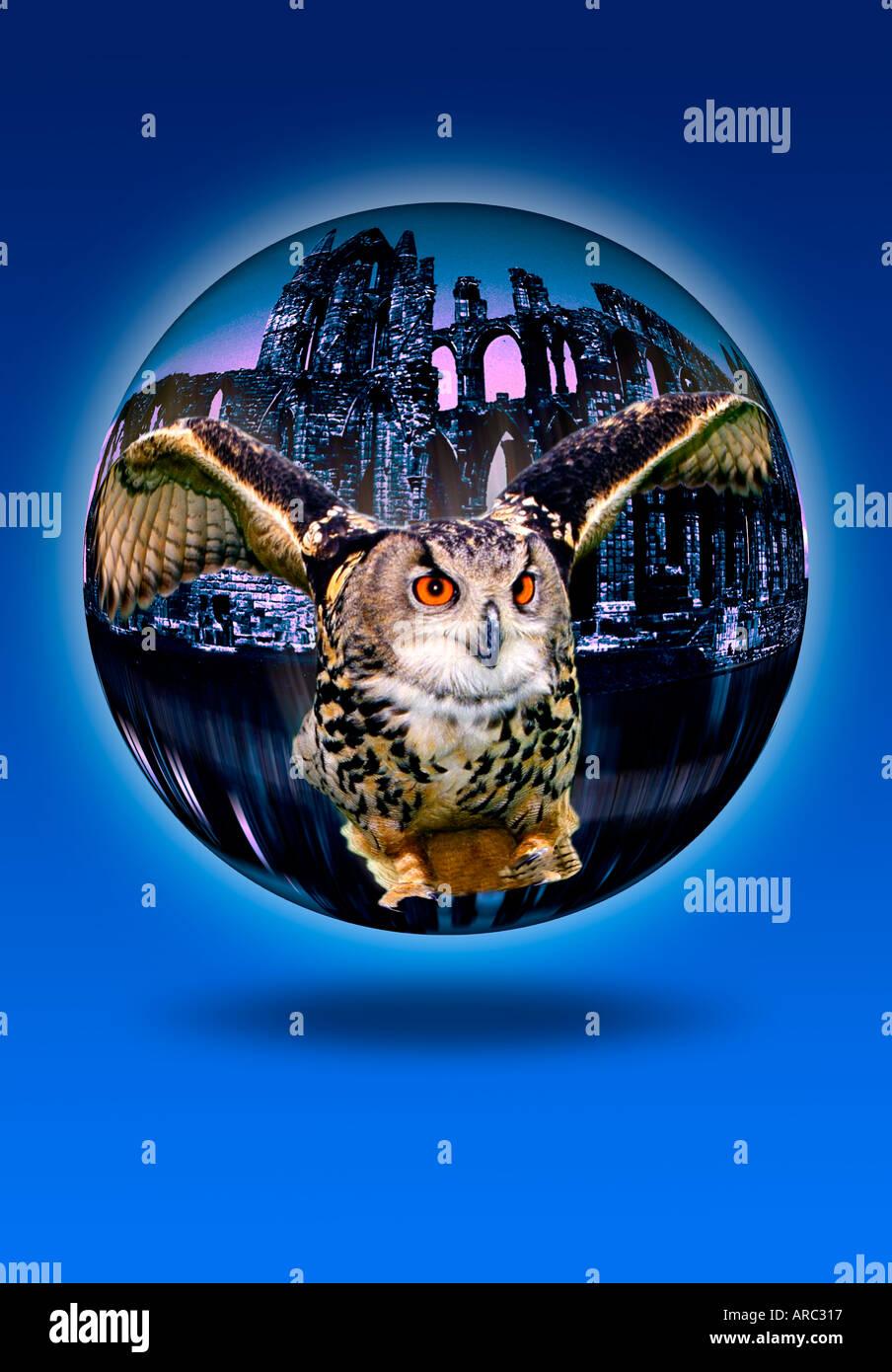 Owl crystal ball concept Photo Stock