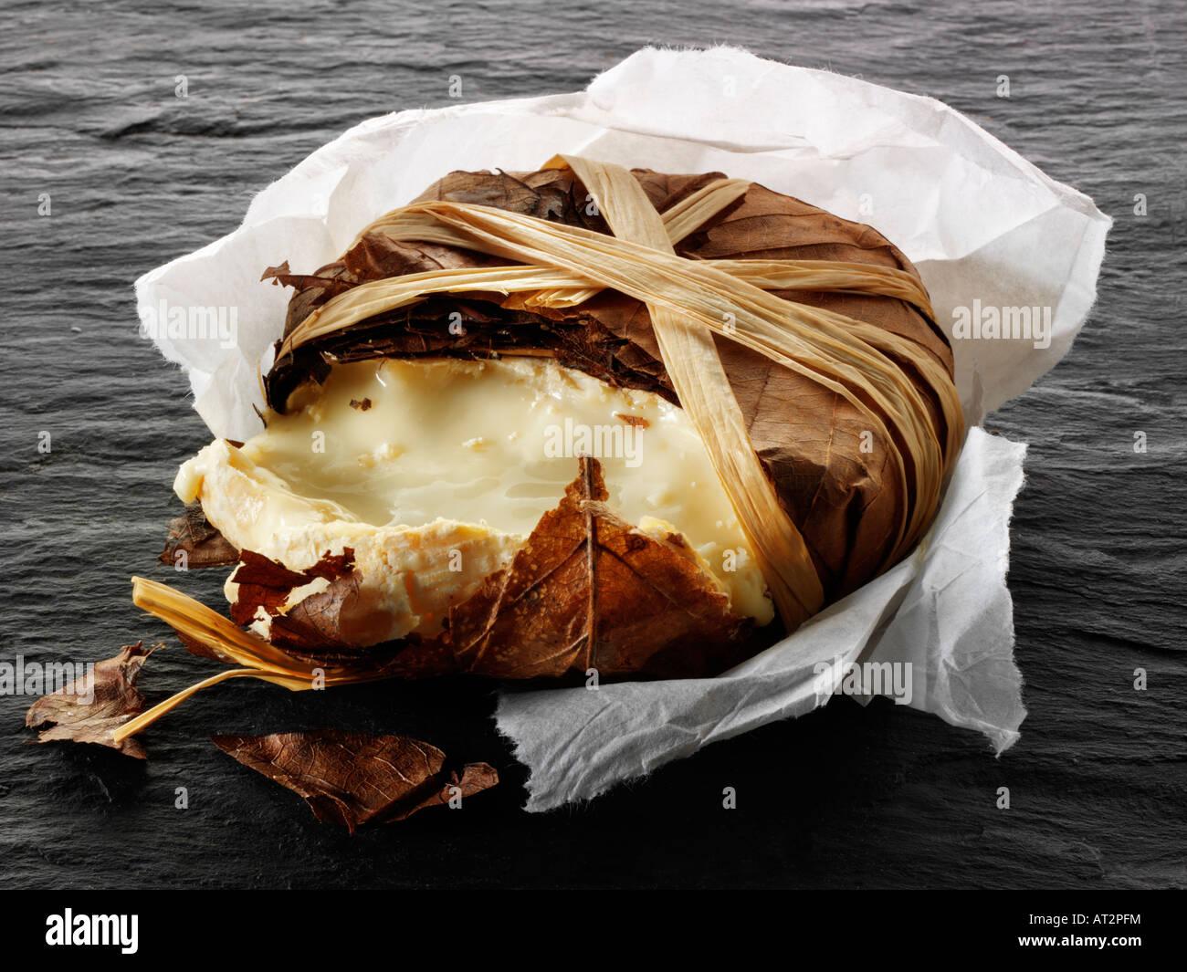 Bannon français fromage de chèvre mou dans les feuilles sur un fond noir. Provence Photo Stock
