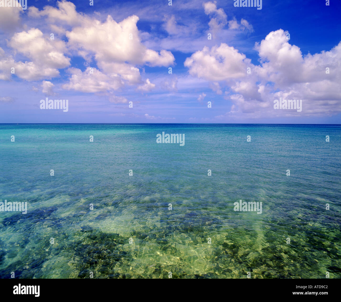La mer turquoise au large de l'île des Caraïbes d'Aruba répond à un ciel bleu plein de fluffy clouds Banque D'Images