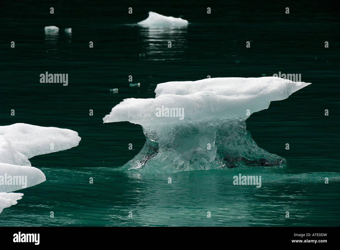 Le réchauffement climatique, la terreur des gués Tracy Arm de l'océan Pacifique de l'Alaska Photo Stock