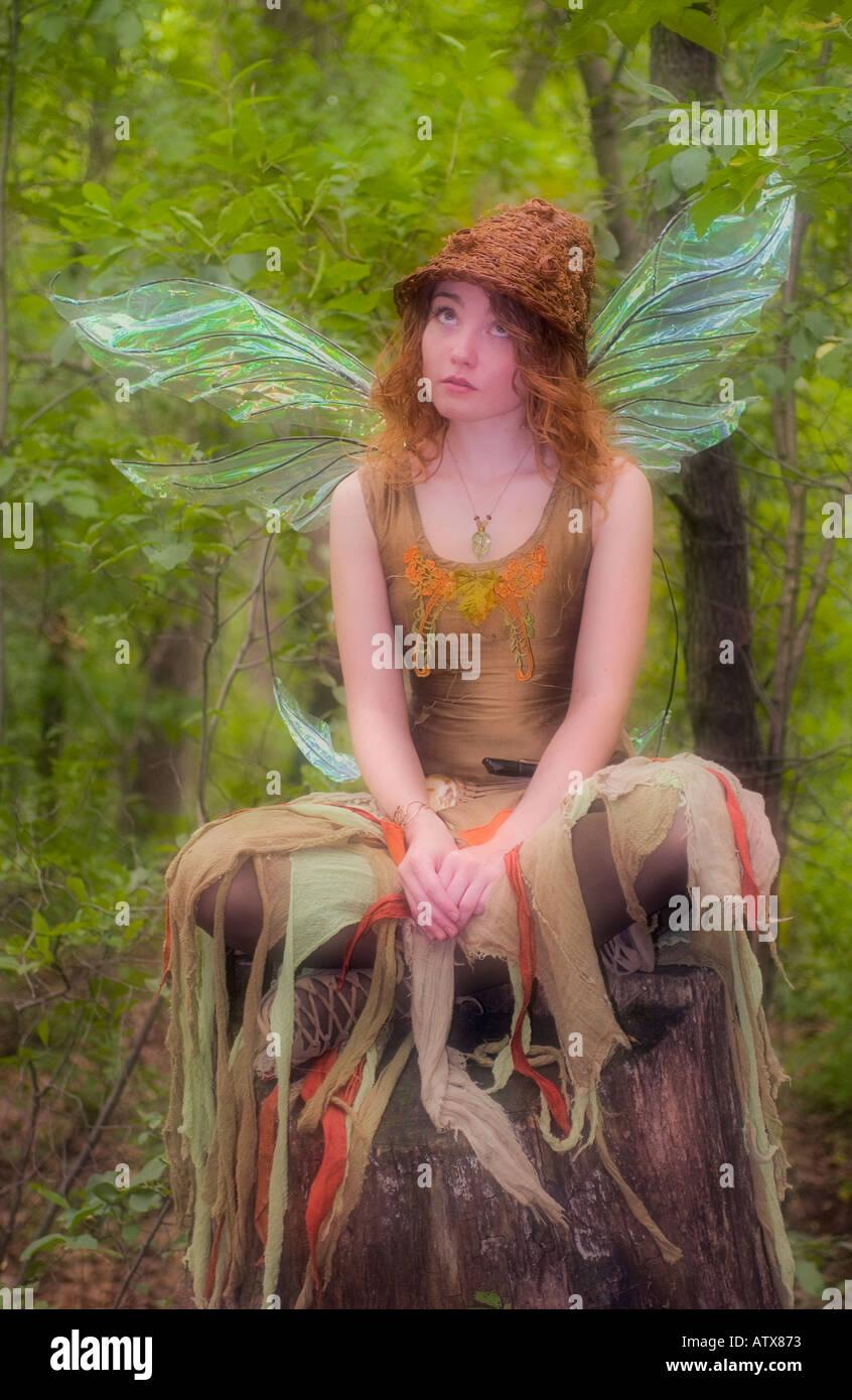 Faerie avec ailes de libellule assis sur une souche Photo Stock