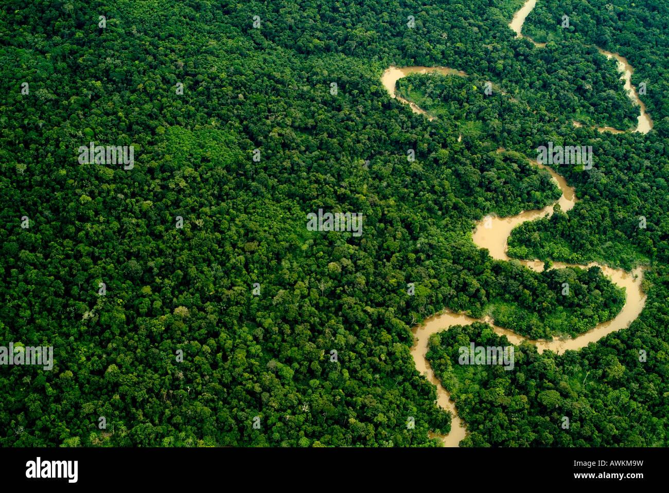 Rivière ou ruisseau de la forêt tropicale amazonienne aériennes Pérou Photo Stock