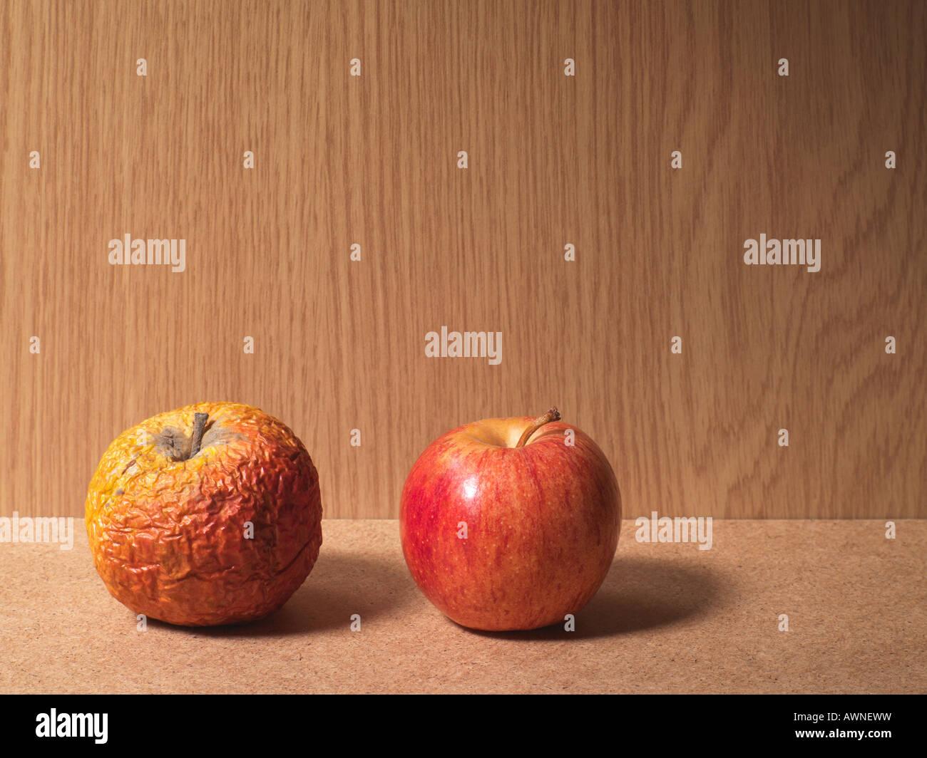 Une pomme pourrie et une pomme mûre Banque D'Images