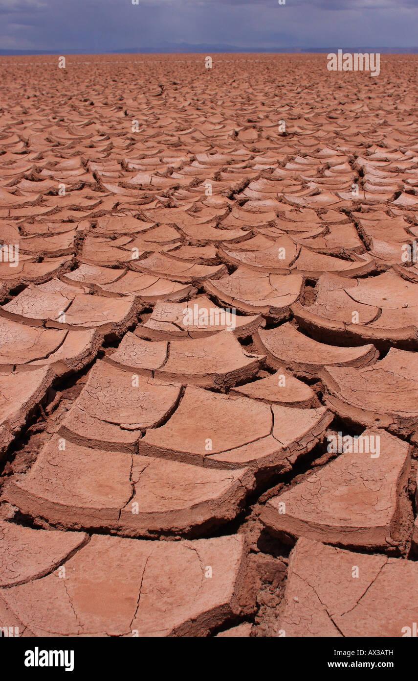 Une étendue énorme de craquage, sec, de boue et de sol sur l'Altiplano bolivien. Photo Stock