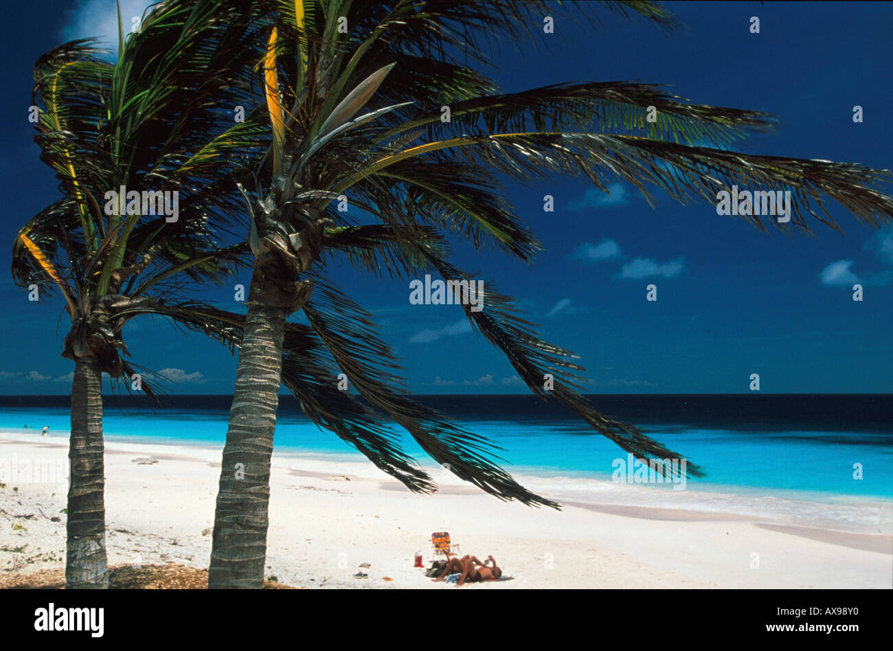 Pink Beach, Bonaire, Niederlaendische Karibik Antillen Banque D'Images