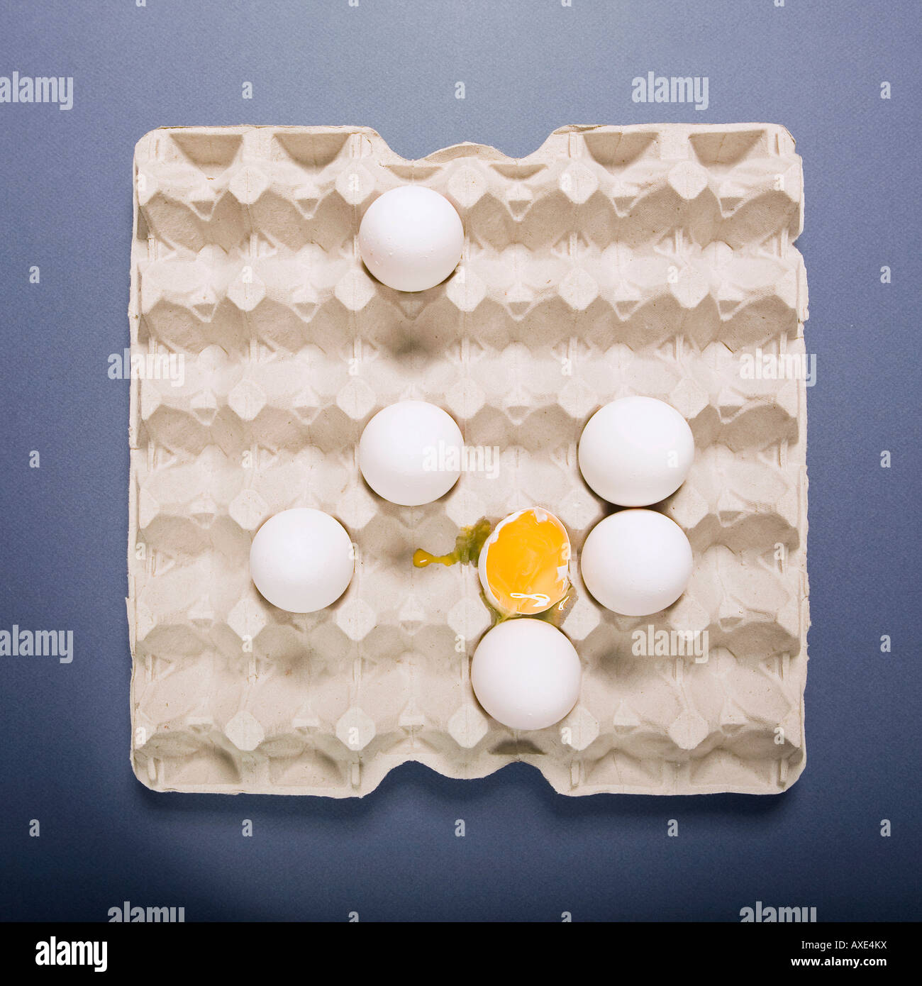 Les œufs et le jaune, elaveted view Photo Stock