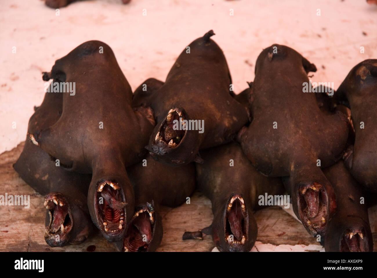 Les chauves-souris fumé en vente au marché traditionnel à Tomohon Highlands Minahasa Utara Sulawesi Sulawesi du Banque D'Images