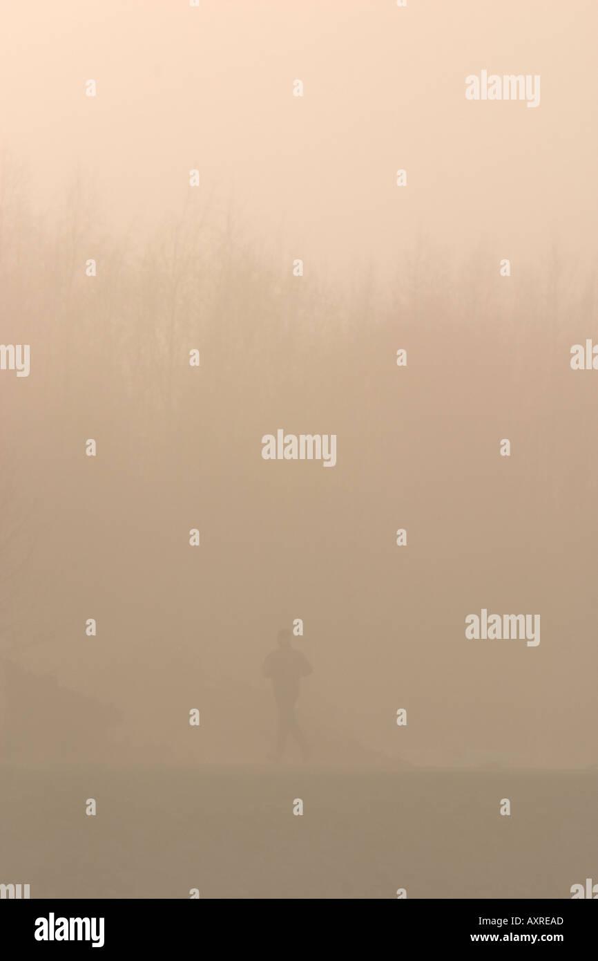 Runner fonctionnant dans les bois dans le brouillard du matin , Finlande Photo Stock