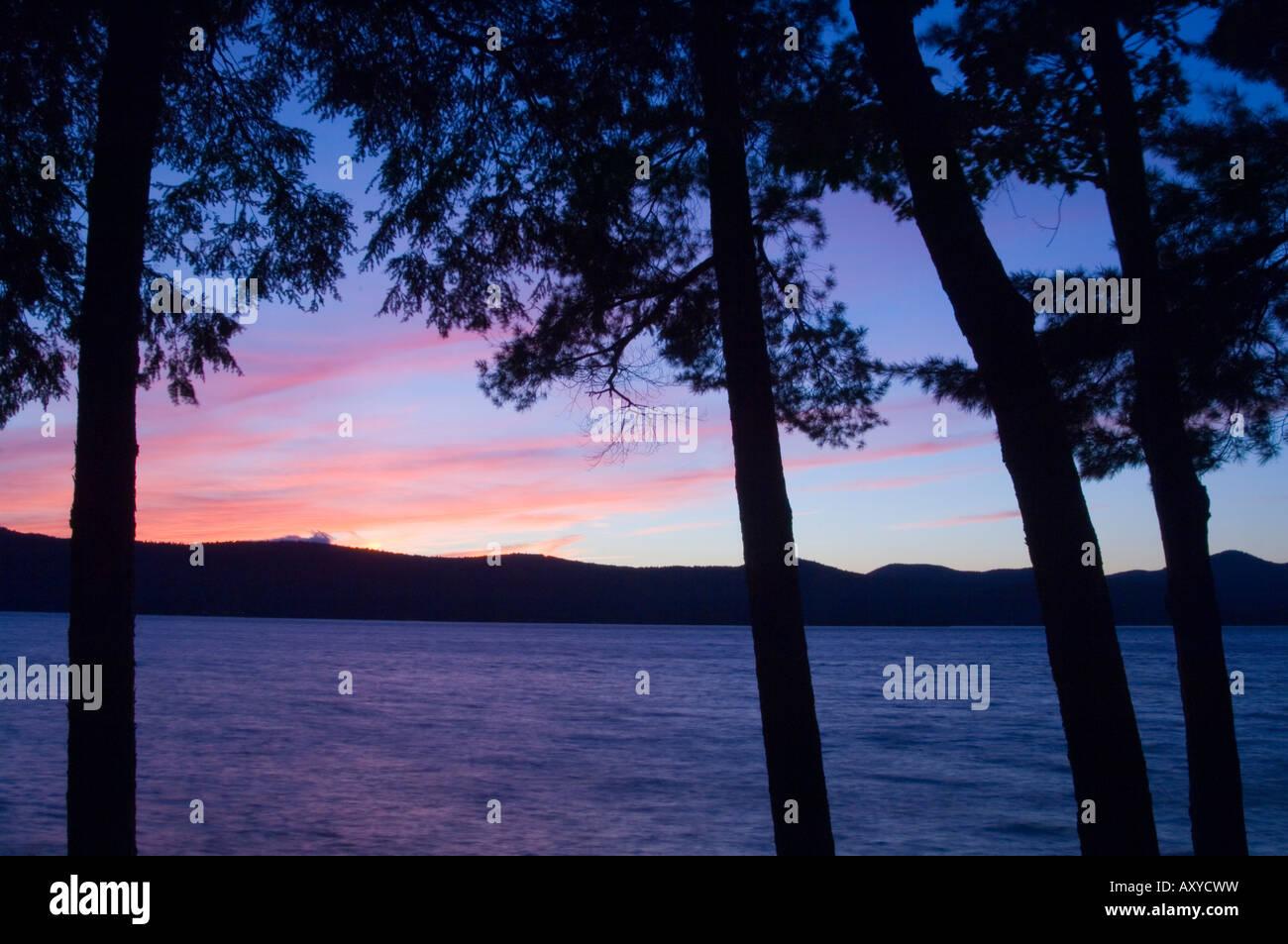 Coucher du soleil à travers les pins, Lake George, les Adirondacks, dans l'État de New York, États Photo Stock