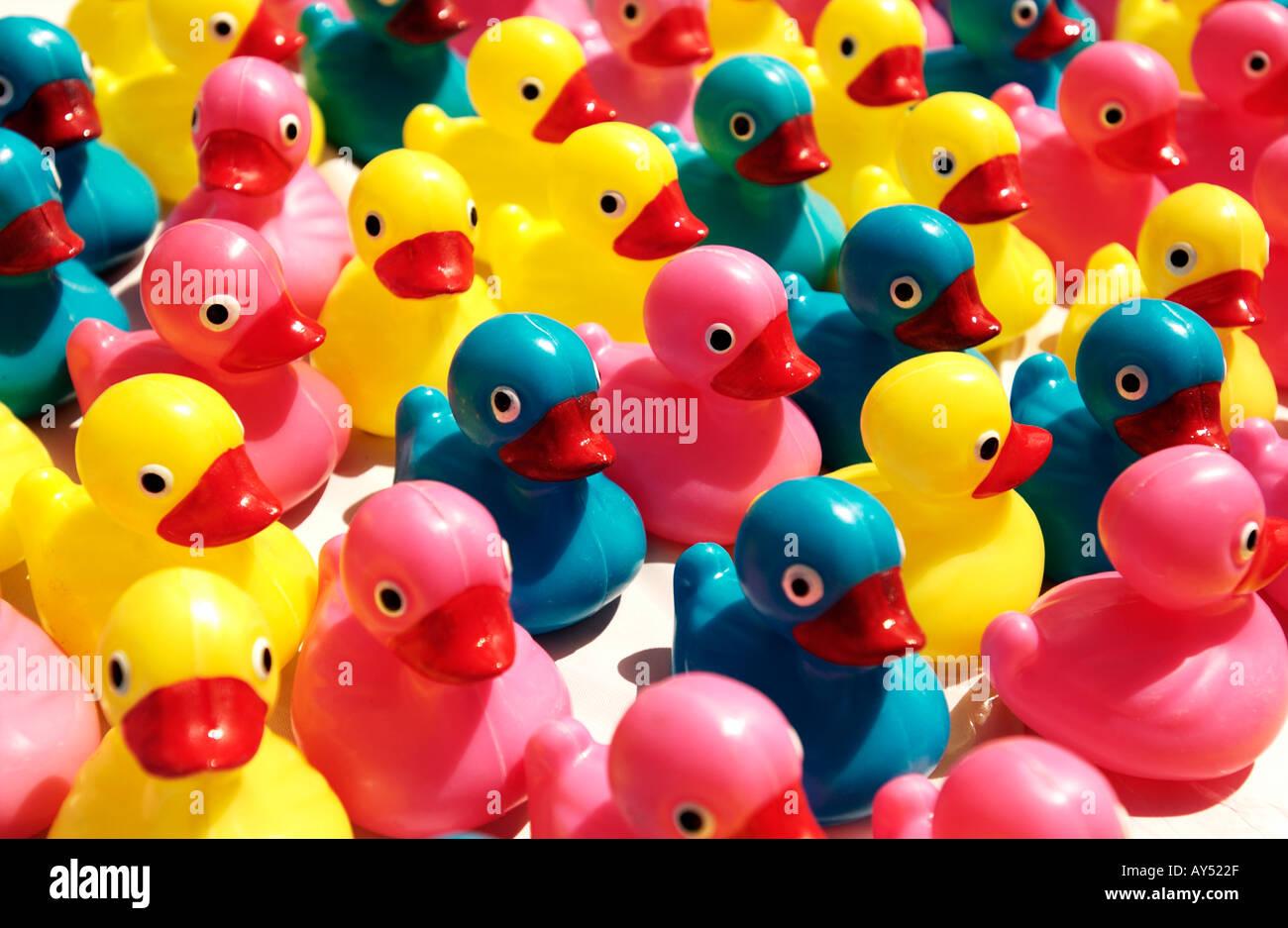 Canards en plastique coloré Photo Stock