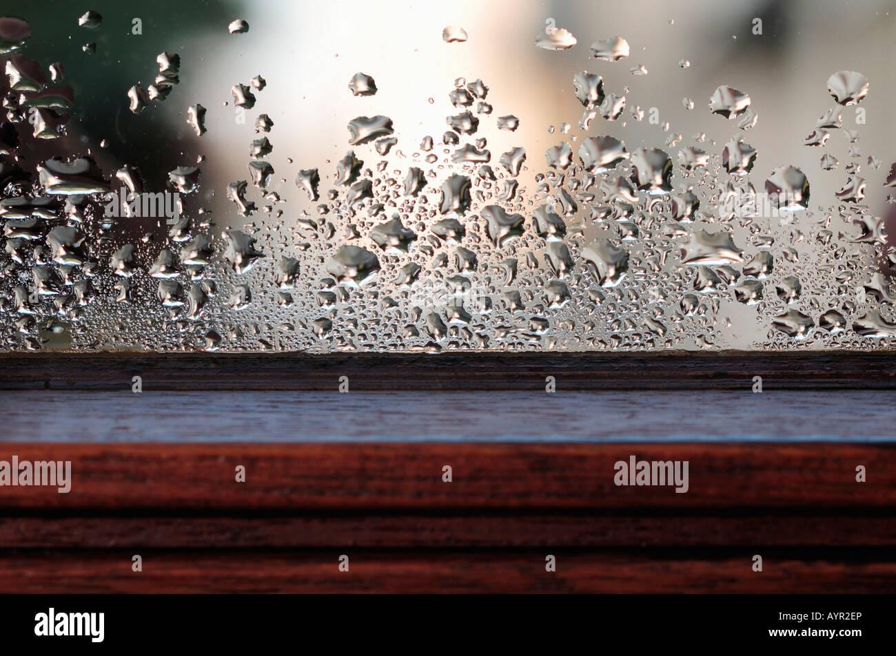 Condensation à l'intérieur d'un volet de fenêtre Photo Stock