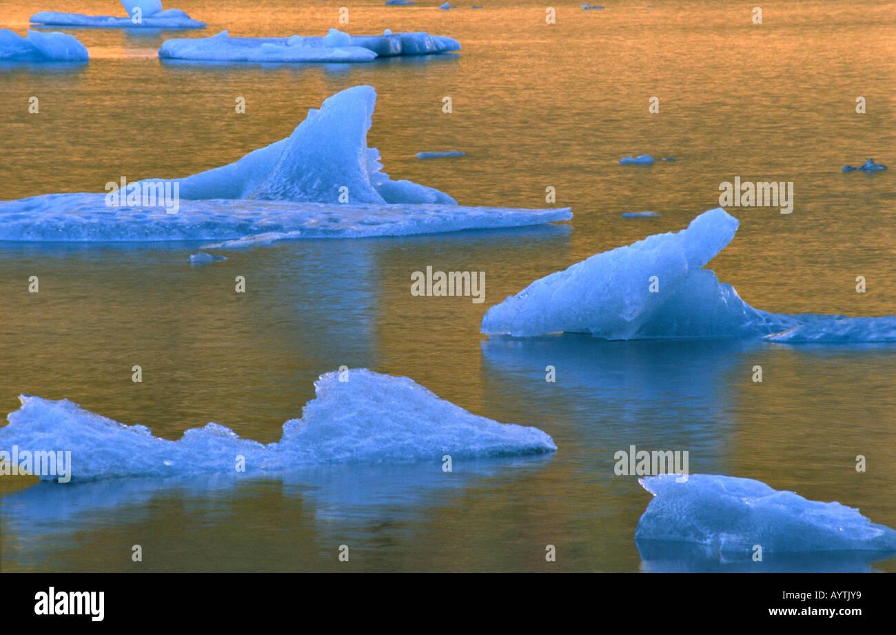 Icebergs dans Laguna Torre au coucher du soleil, parc national Los Glaciares, Patagonie, Argentine Photo Stock