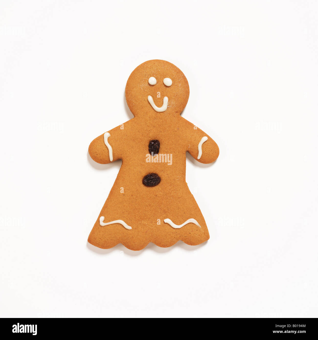 Gingerbread cookie Photo Stock