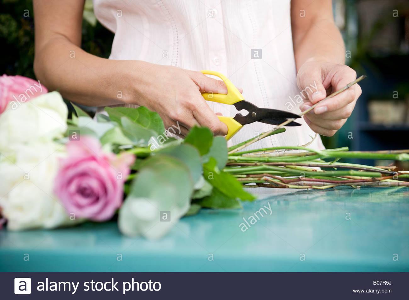 Woman's hands attachant ensemble un bouquet de roses blanches et roses Photo Stock