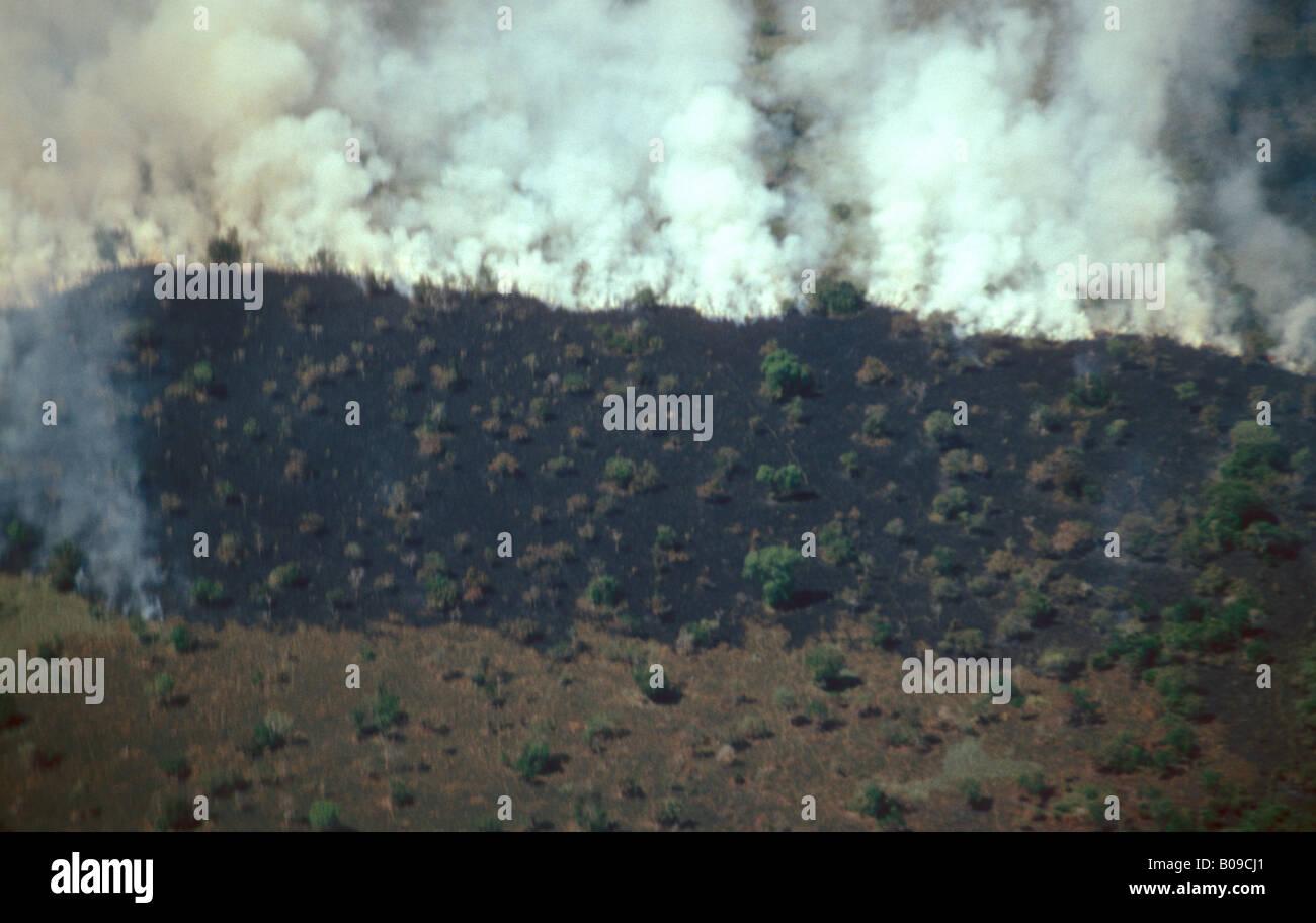 Terre d'être défrichées pour l'agriculture ou l'élevage de bétail Ilha do Félice Photo Stock