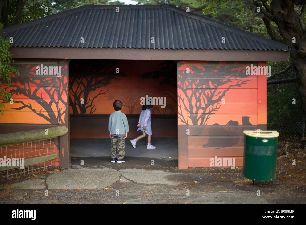 Garçon de 6 ans et sa sœur âgée de 4 ans d'explorer un refuge au zoo de Wellington, Nouvelle Zélande Banque D'Images
