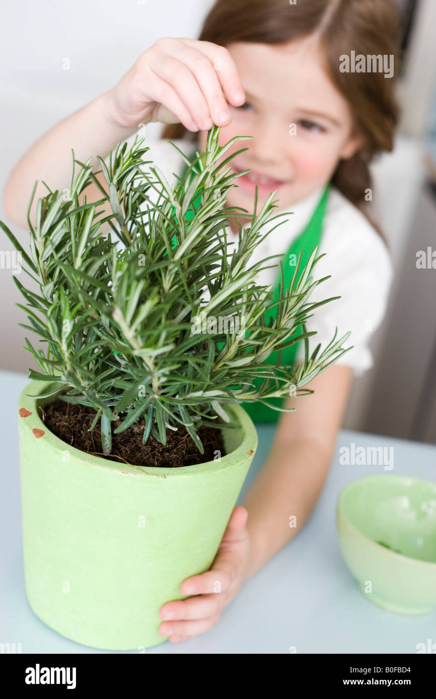 Girl tirant des herbes Photo Stock