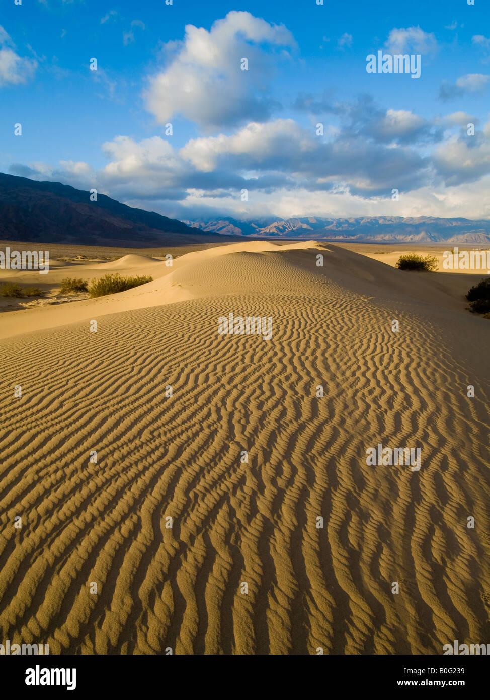 Dunes de sable de Stovepipe Wells Death Valley National Park Californie USA Banque D'Images
