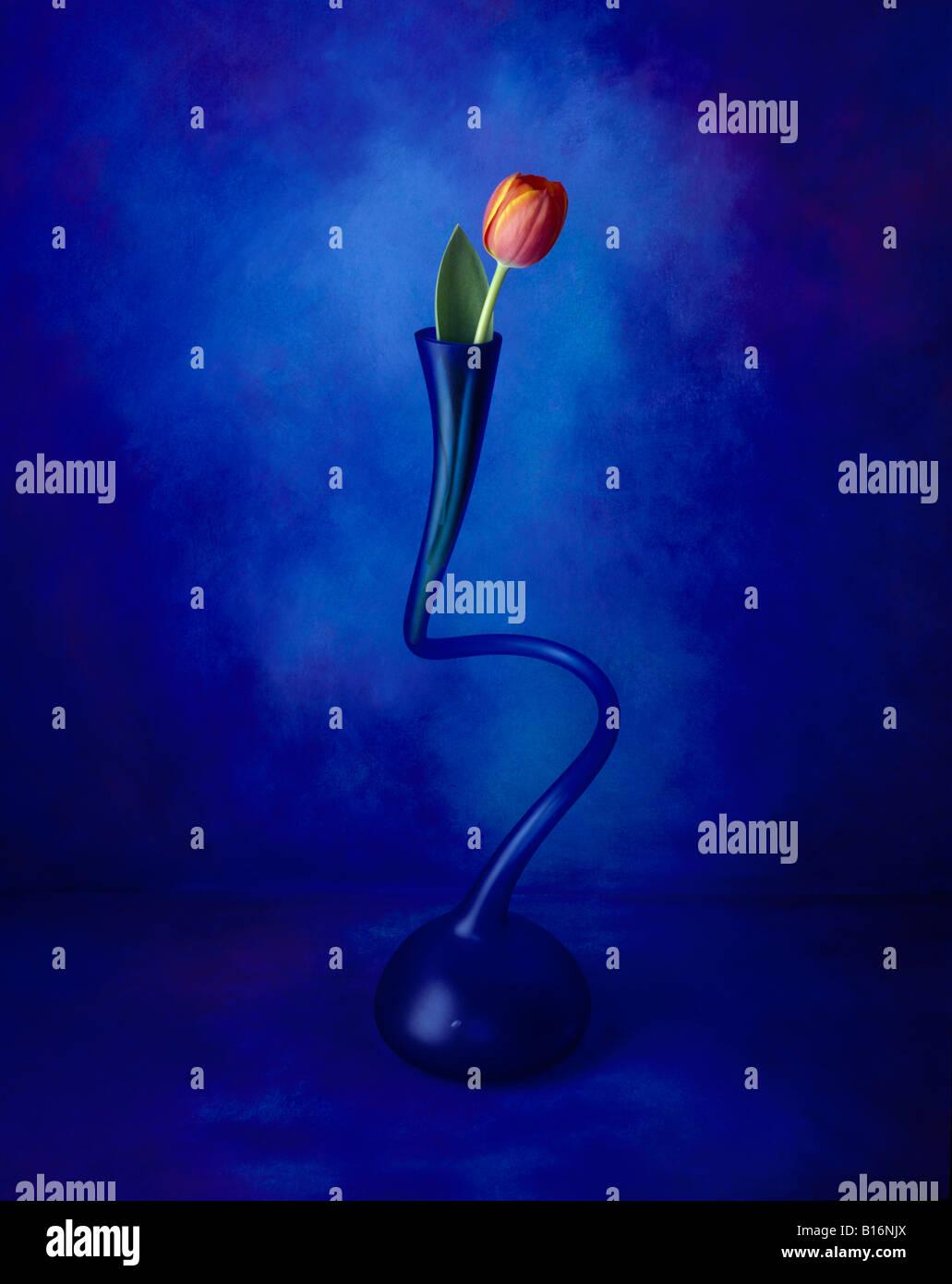5 d'une série de photos couleur format portrait est celui d'une fleur rouge dans un vase sur un canevas Photo Stock