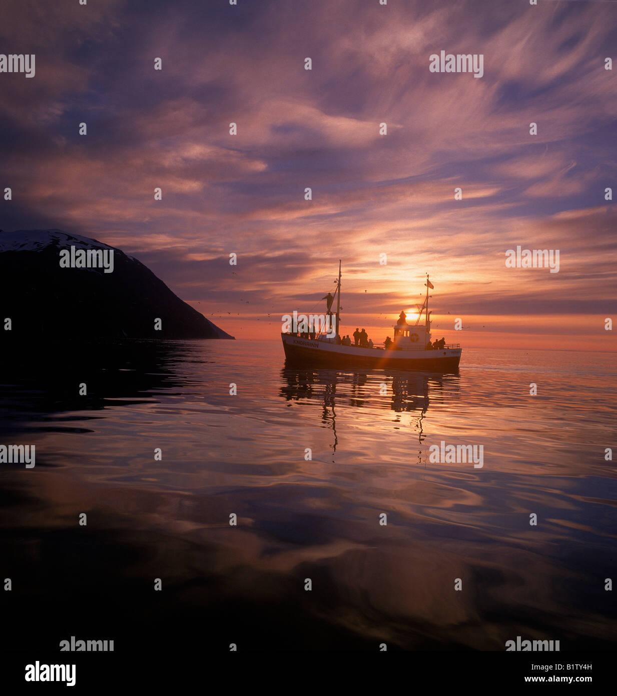 La chasse touristique sur bateau, Husavik, l'Islande Banque D'Images