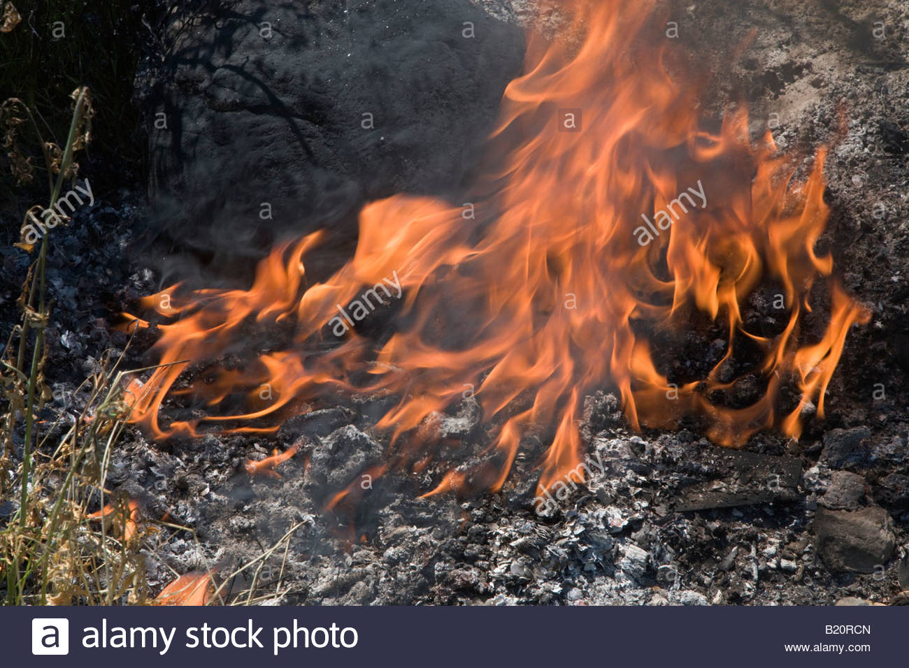 Close up of flames Photo Stock